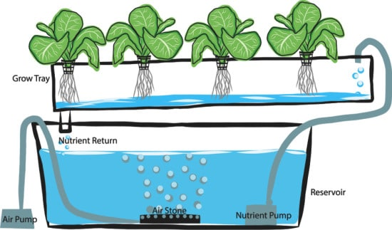 Aquaponics Nutrient Infographic