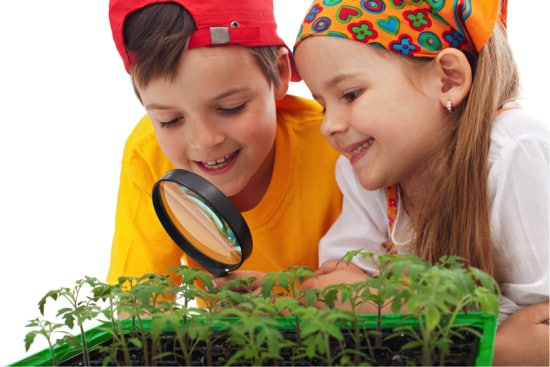 Teaching Kids to Grow with Aquaponics